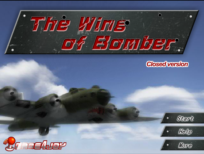 The Wing of Bomber